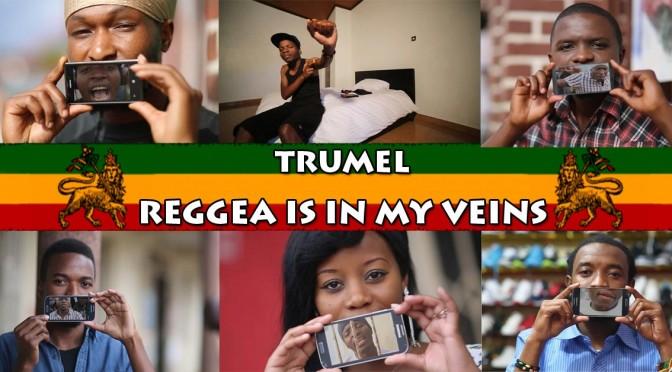 Reggae Is In My Veins - Trumel