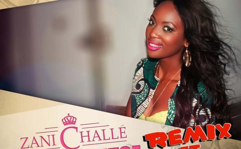 Zani Challe Releases Ndiphunzitse Remix Featuring Nepman